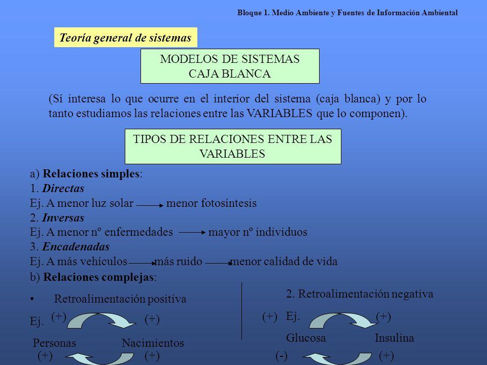 Teoría general de sistemas MODELOS DE SISTEMAS CAJA BLANCA (Sí interesa lo que ocurre en el interior del sistema (caja blanca) y por lo tanto estudiam