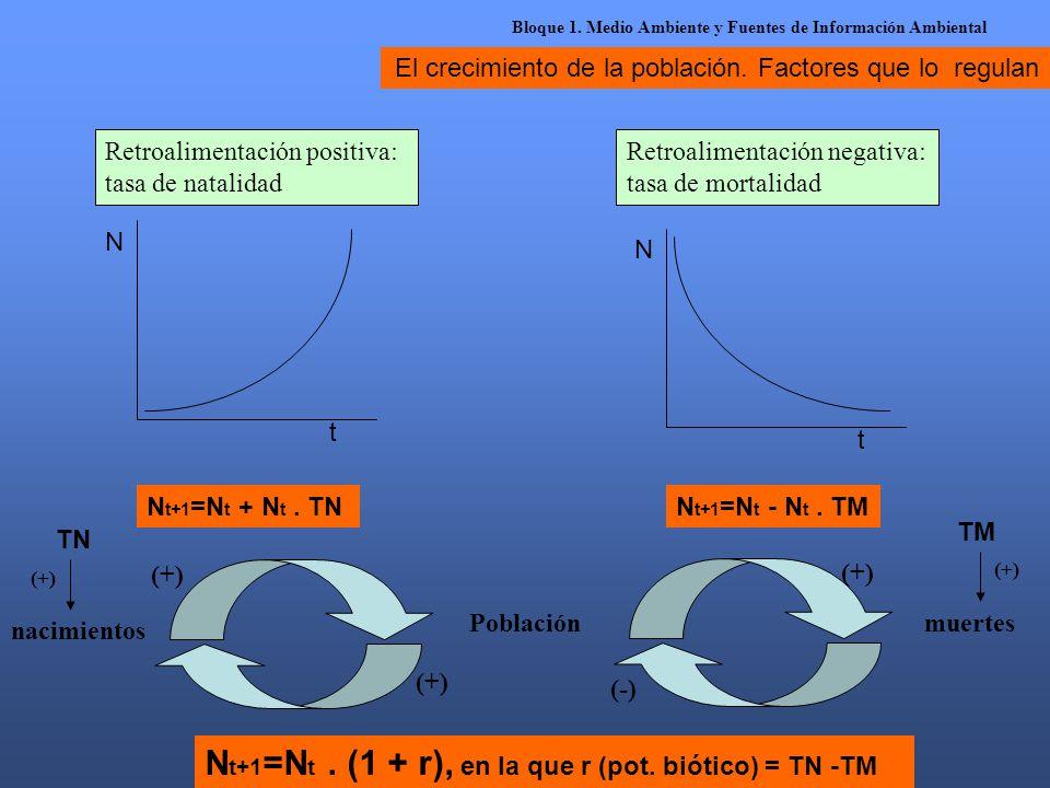 El crecimiento de la población. Factores que lo regulan Retroalimentación positiva: tasa de natalidad Retroalimentación negativa: tasa de mortalidad N