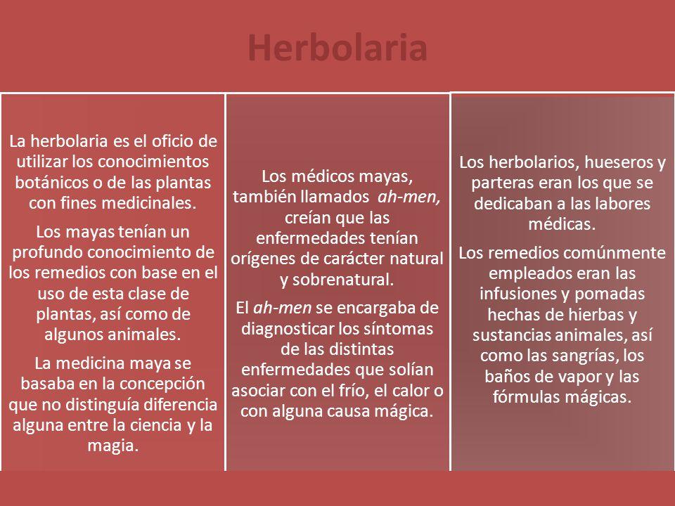 Herbolaria La herbolaria es el oficio de utilizar los conocimientos botánicos o de las plantas con fines medicinales. Los mayas tenían un profundo con