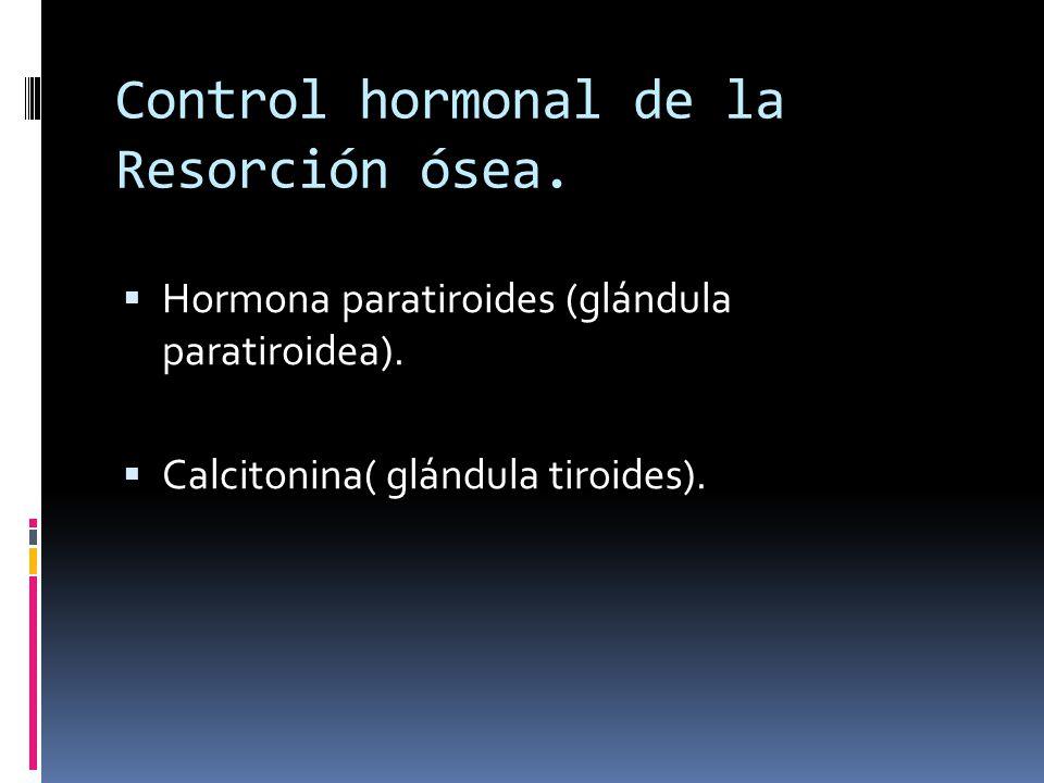 Control hormonal de la Resorción ósea. Hormona paratiroides (glándula paratiroidea). Calcitonina( glándula tiroides).