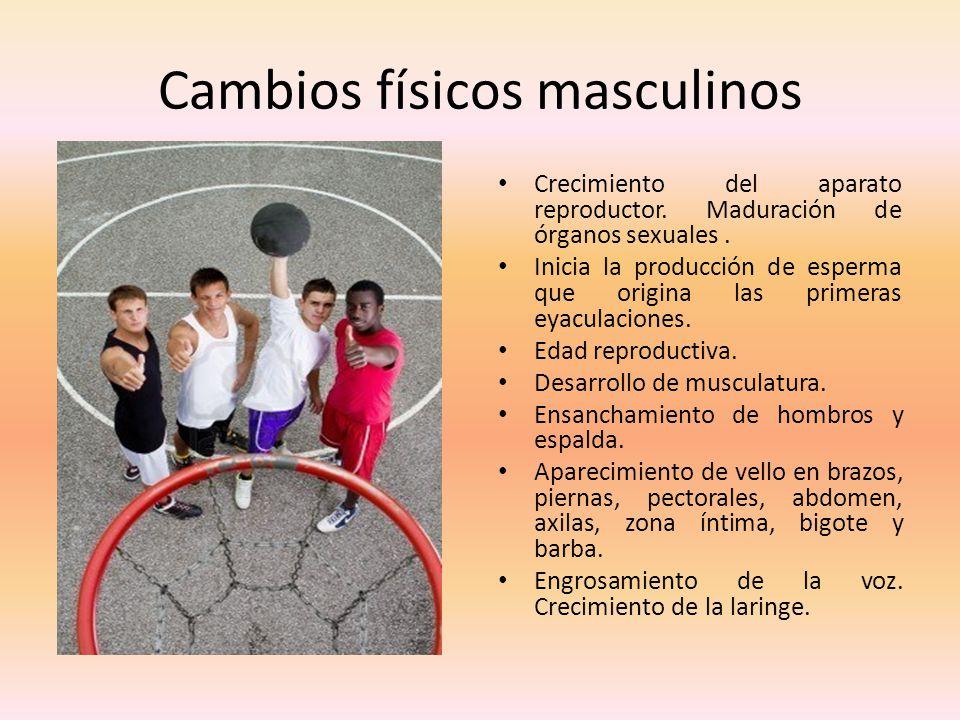 Cambios físicos masculinos Crecimiento del aparato reproductor. Maduración de órganos sexuales. Inicia la producción de esperma que origina las primer