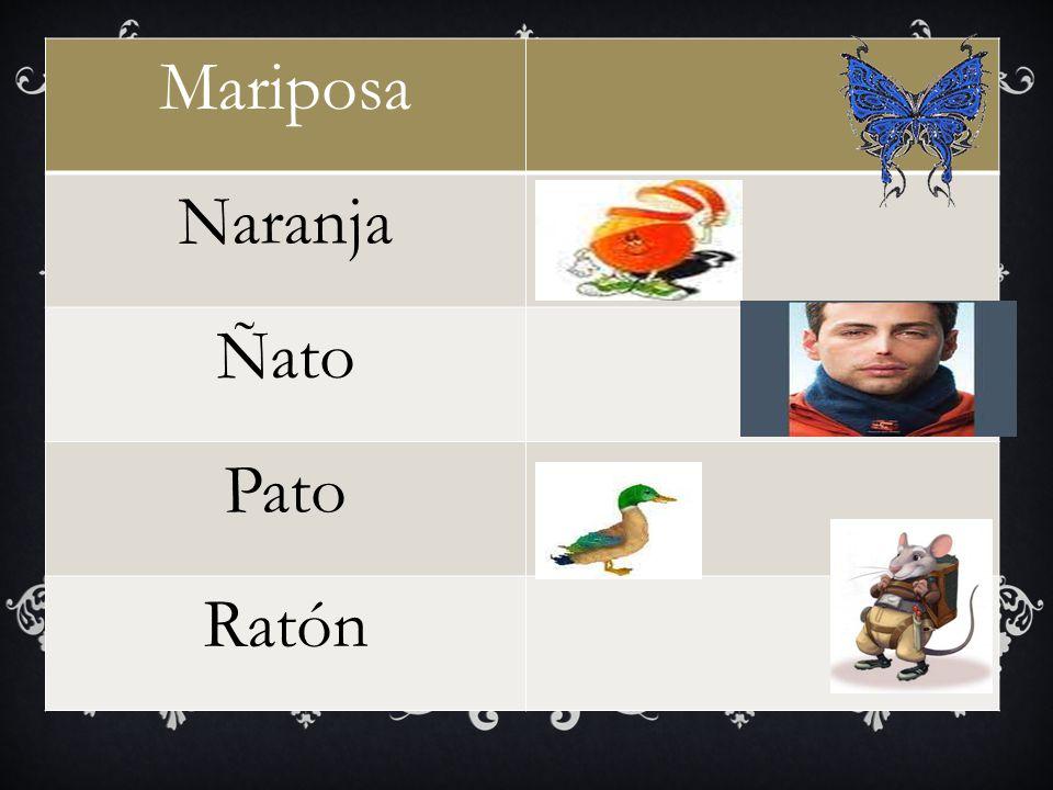 Mariposa Naranja Ñato Pato Ratón
