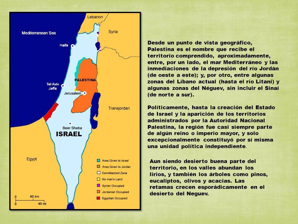 Desde un punto de vista geográfico, Palestina es el nombre que recibe el territorio comprendido, aproximadamente, entre, por un lado, el mar Mediterrá
