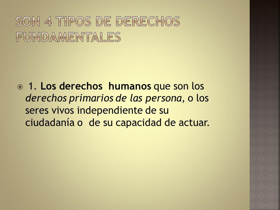 1. Los derechos humanos que son los derechos primarios de las persona, o los seres vivos independiente de su ciudadanía o de su capacidad de actuar.