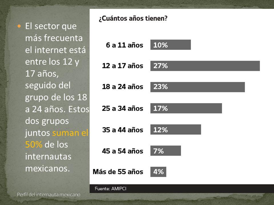 El sector que más frecuenta el internet está entre los 12 y 17 años, seguido del grupo de los 18 a 24 años.
