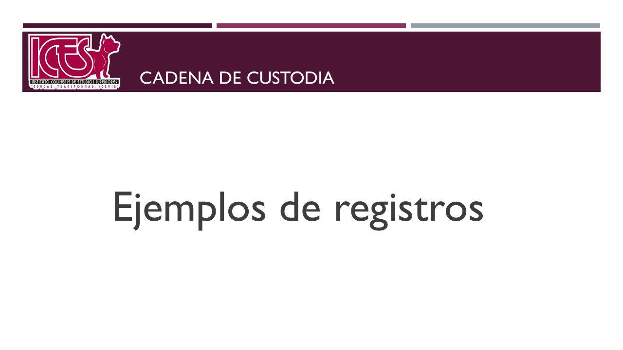 CADENA DE CUSTODIA Ejemplos de registros