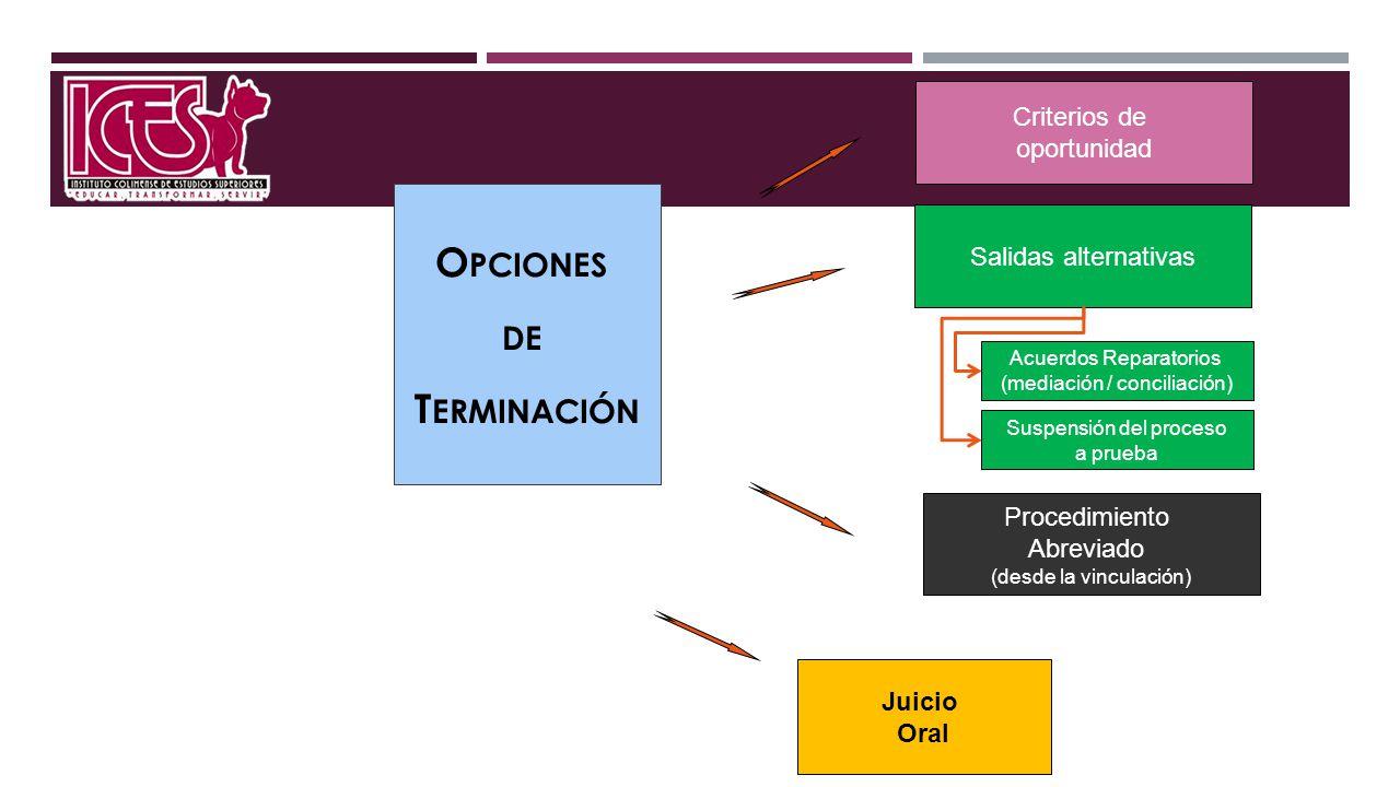 O PCIONES DE T ERMINACIÓN Juicio Oral Acuerdos Reparatorios (mediación / conciliación) Procedimiento Abreviado (desde la vinculación) Salidas alternat