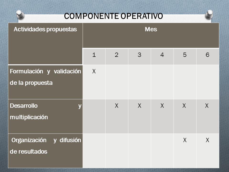 Actividades propuestasMes 123456 Formulación y validación de la propuesta X Desarrollo y multiplicación XXXX X Organización y difusión de resultados X