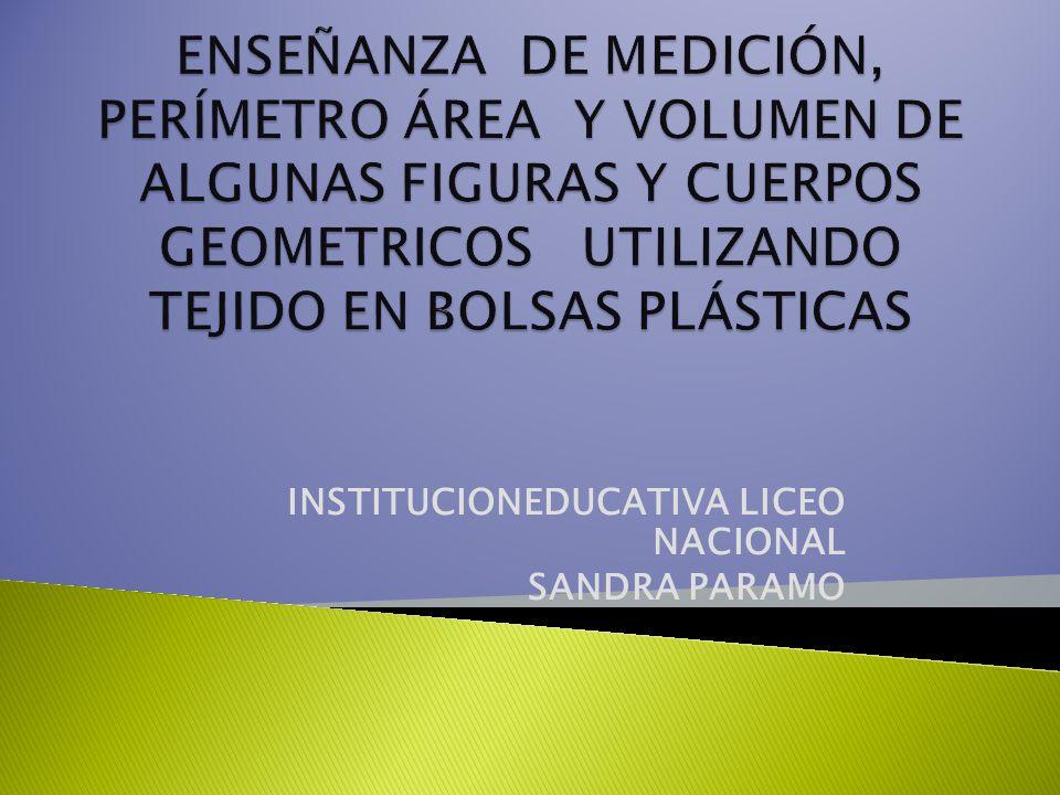 INSTITUCIONEDUCATIVA LICEO NACIONAL SANDRA PARAMO