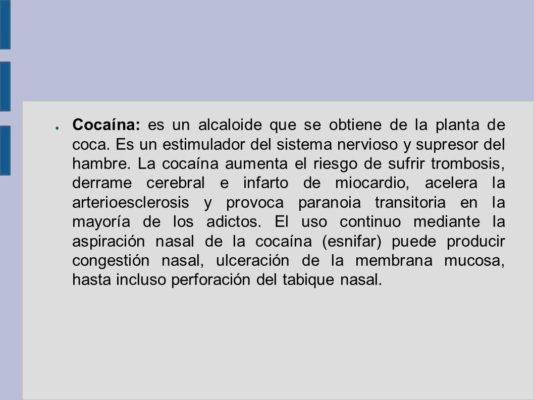 Cocaína: es un alcaloide que se obtiene de la planta de coca. Es un estimulador del sistema nervioso y supresor del hambre. La cocaína aumenta el ries