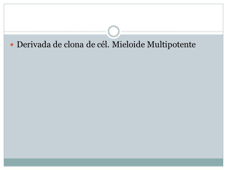 Derivada de clona de cél. Mieloide Multipotente