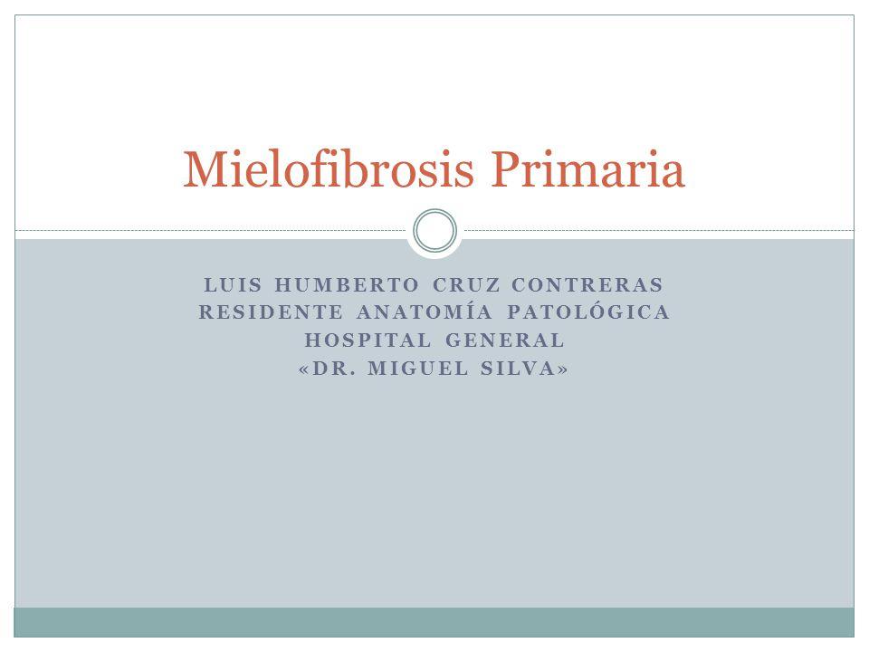 LUIS HUMBERTO CRUZ CONTRERAS RESIDENTE ANATOMÍA PATOLÓGICA HOSPITAL GENERAL «DR. MIGUEL SILVA» Mielofibrosis Primaria