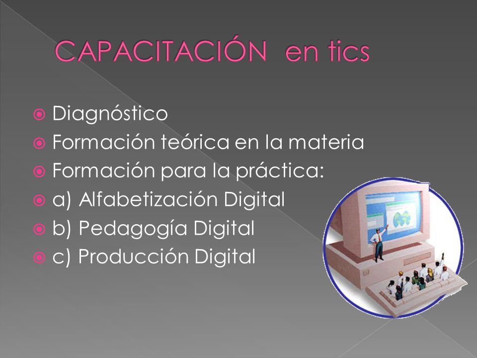 Diagnóstico Formación teórica en la materia Formación para la práctica: a) Alfabetización Digital b) Pedagogía Digital c) Producción Digital
