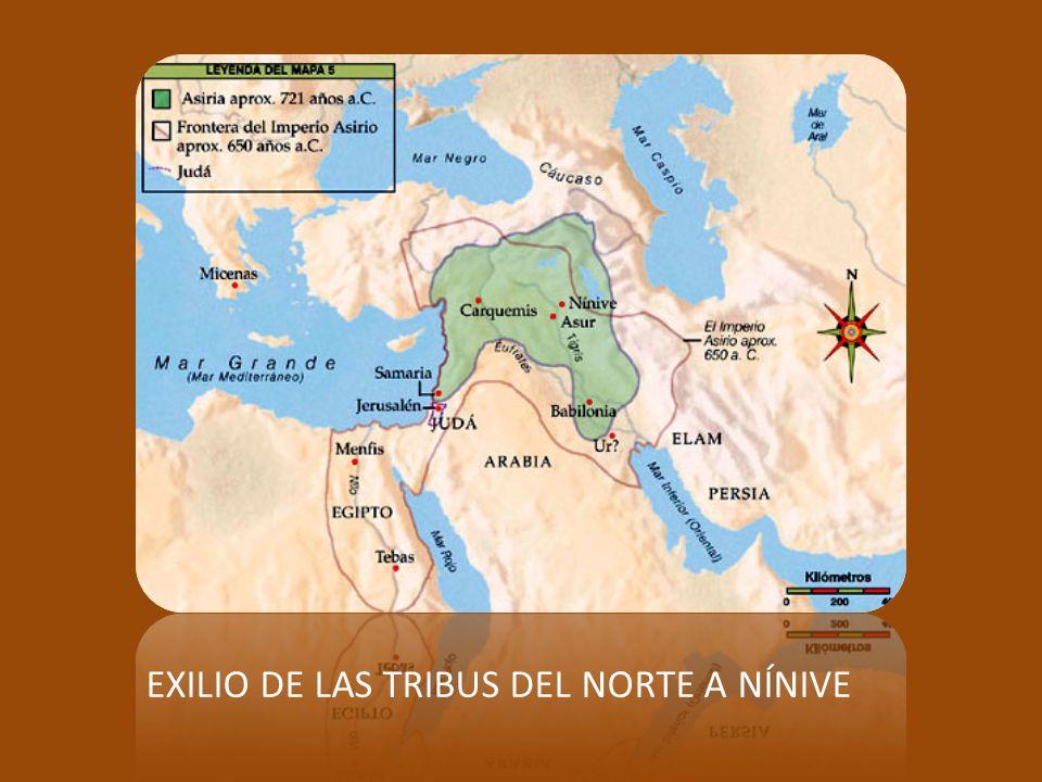 ISAÍAS 1-39 Primera parte: oráculos previos a la caída del Reino del Norte. ISAÍAS 40-55 (de un profeta anónimo) Segunda parte: el libro de la consola