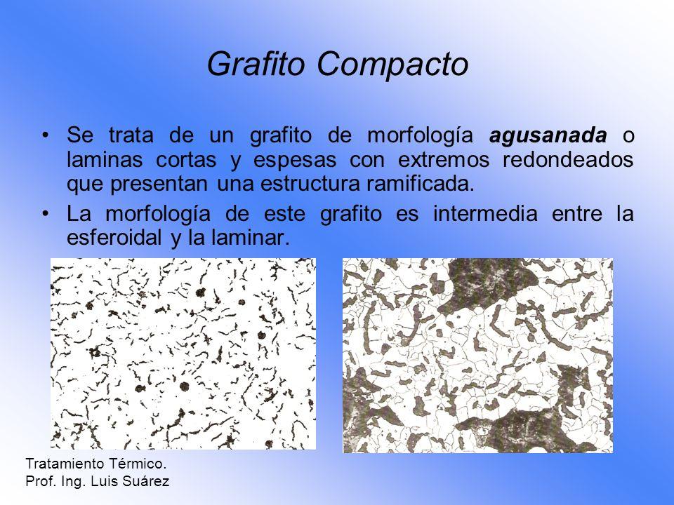 Grafito Compacto Se trata de un grafito de morfología agusanada o laminas cortas y espesas con extremos redondeados que presentan una estructura ramif