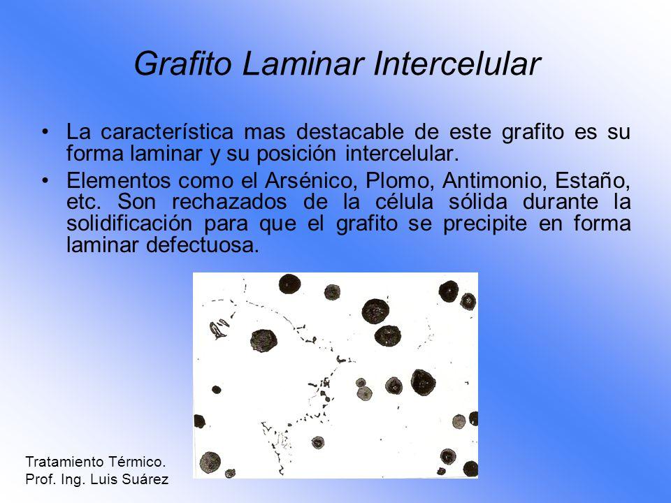 Grafito Laminar Intercelular La característica mas destacable de este grafito es su forma laminar y su posición intercelular. Elementos como el Arséni