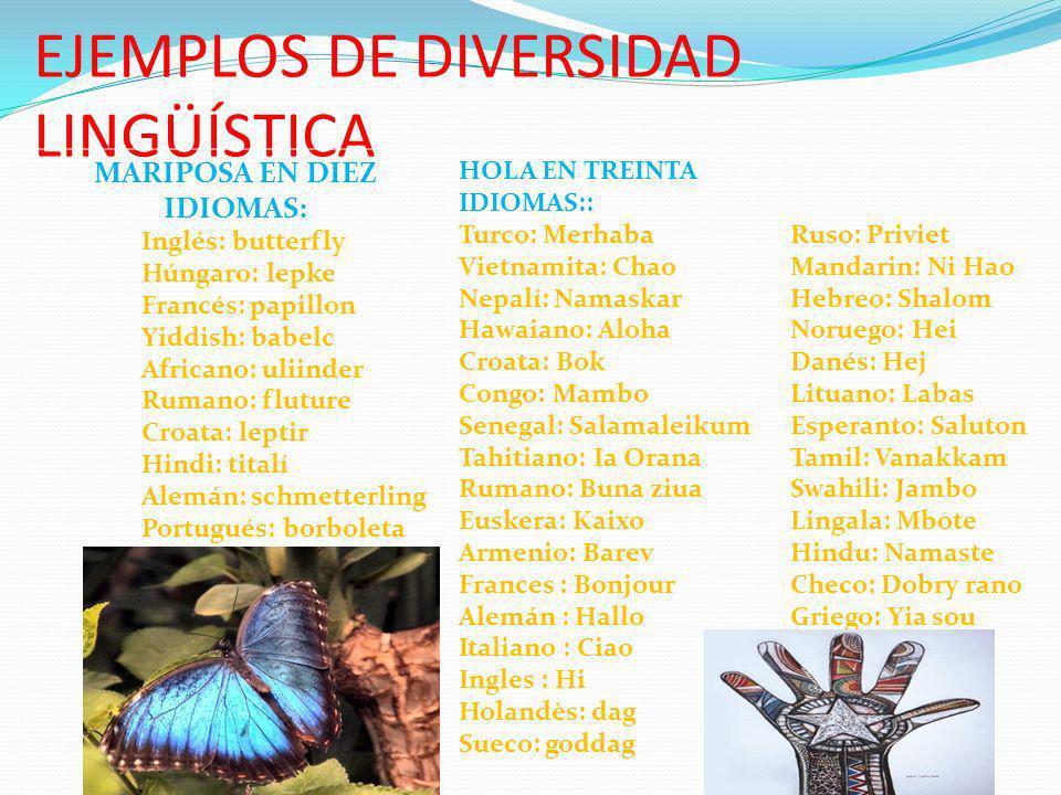 EJEMPLOS DE DIVERSIDAD LINGÜÍSTICA MARIPOSA EN DIEZ IDIOMAS: Inglés: butterfly Húngaro: lepke Francés: papillon Yiddish: babelc Africano: uliinder Rum