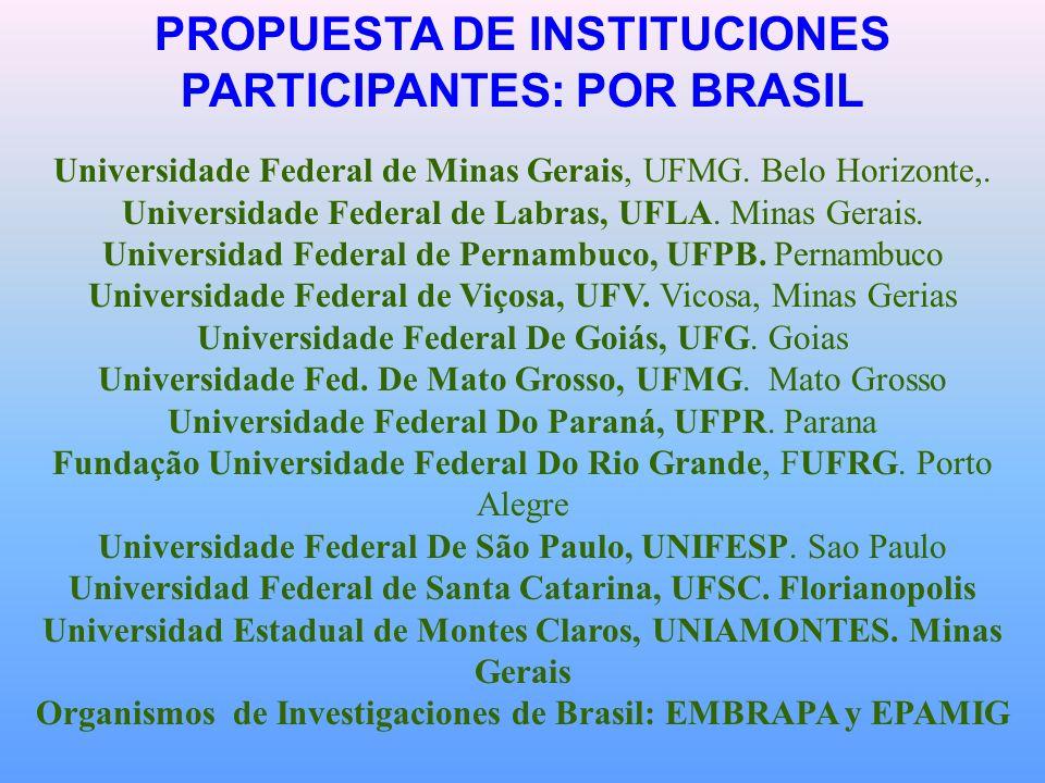 PROPUESTA DE INSTITUCIONES PARTICIPANTES: POR BRASIL Universidade Federal de Minas Gerais, UFMG.