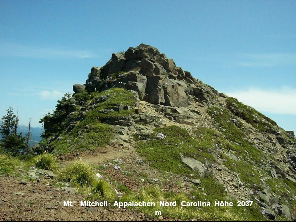 Mt. Mitchell Appalachen Nord Carolina Höhe 2037 m