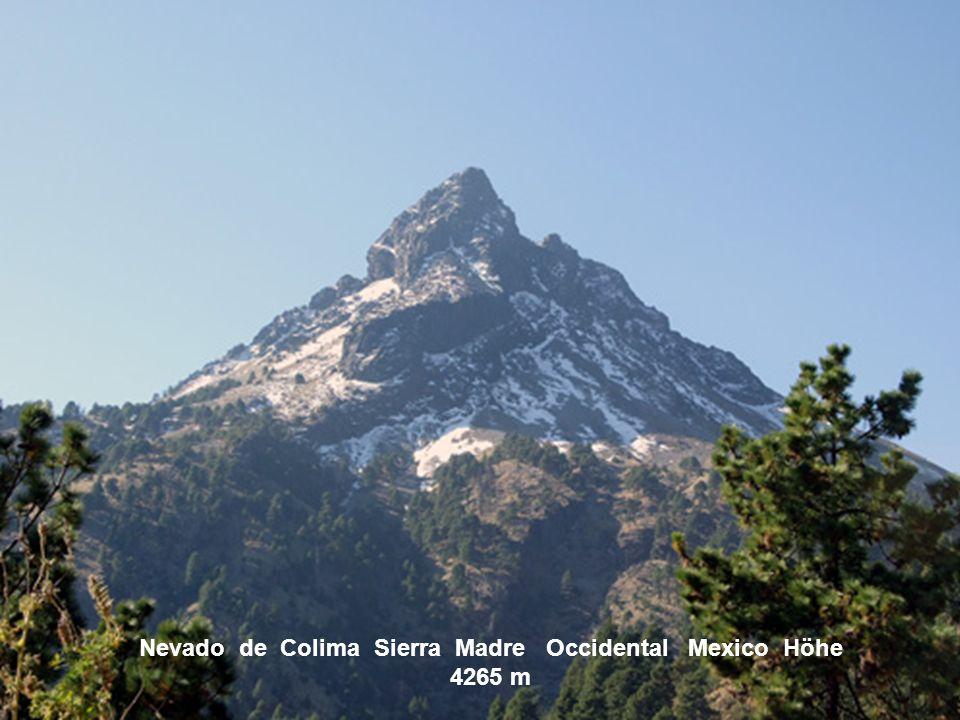 Nevado de Colima Sierra Madre Occidental Mexico Höhe 4265 m