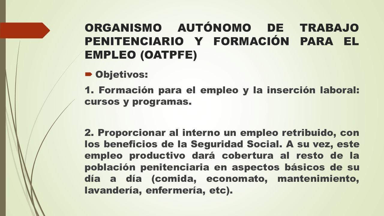 ORGANISMO AUTÓNOMO DE TRABAJO PENITENCIARIO Y FORMACIÓN PARA EL EMPLEO (OATPFE)  Objetivos: 1. Formación para el empleo y la inserción laboral: curso
