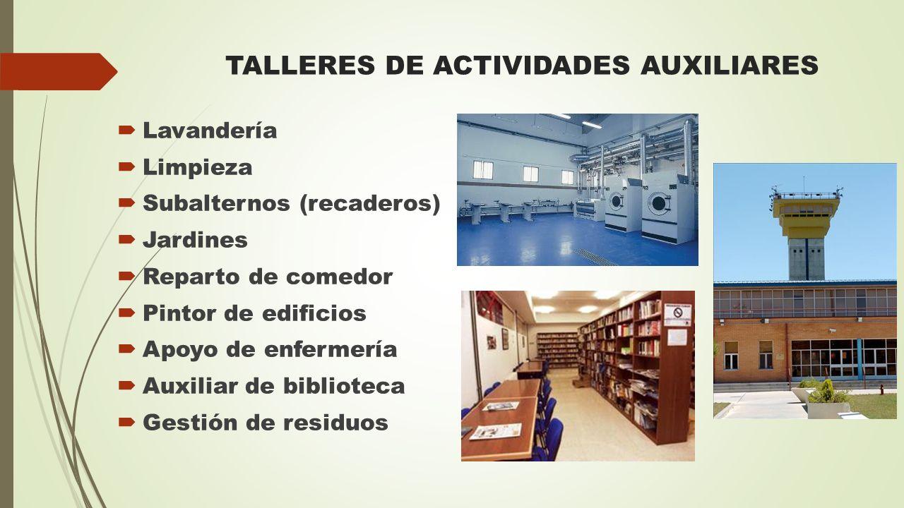 TALLERES DE ACTIVIDADES AUXILIARES  Lavandería  Limpieza  Subalternos (recaderos)  Jardines  Reparto de comedor  Pintor de edificios  Apoyo de