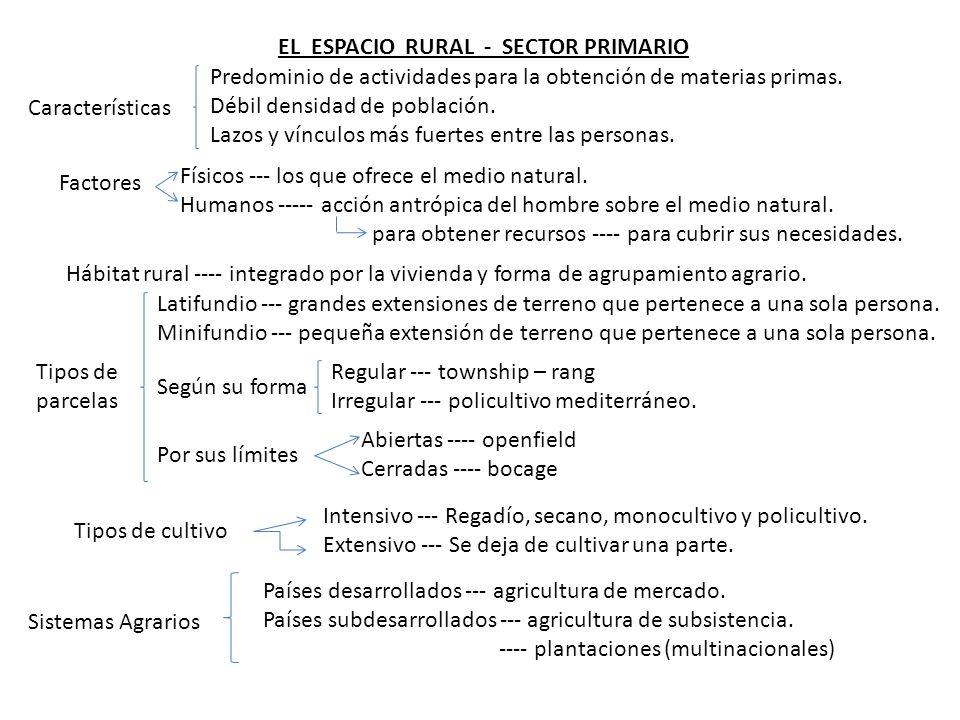 EL ESPACIO RURAL - SECTOR PRIMARIO Predominio de actividades para la obtención de materias primas.