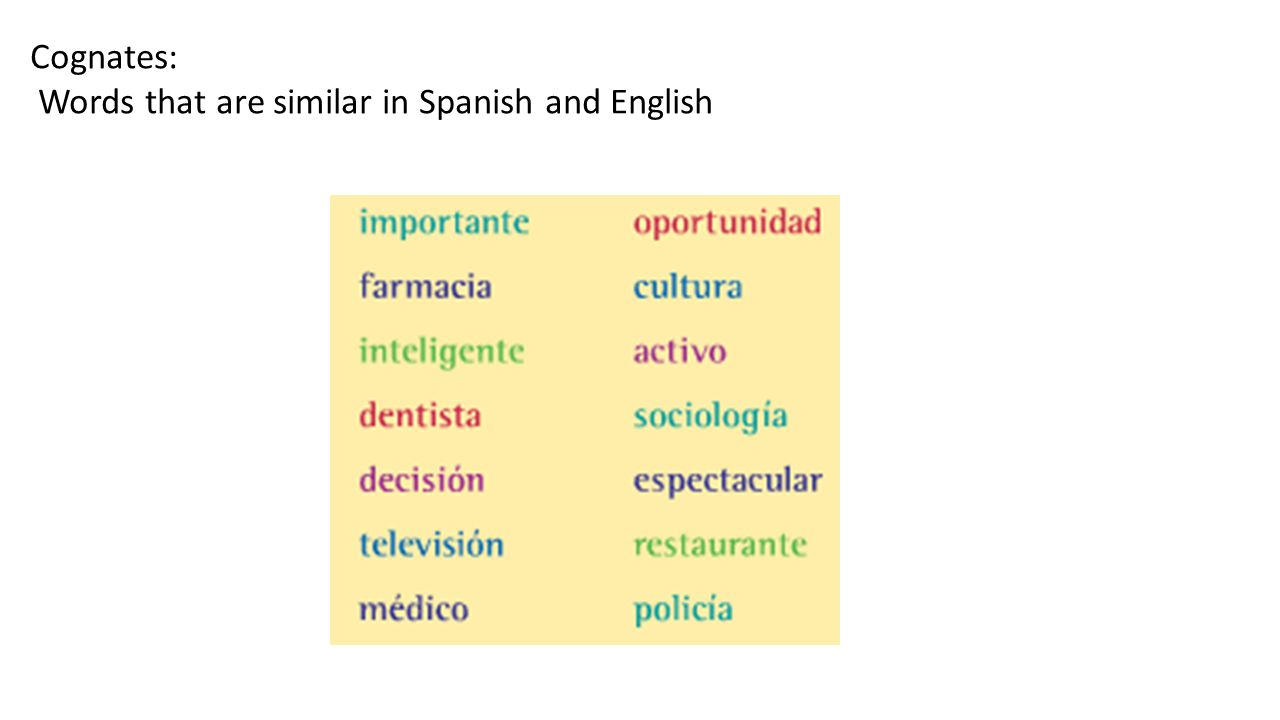 Cognates: Words that are similar in Spanish and English