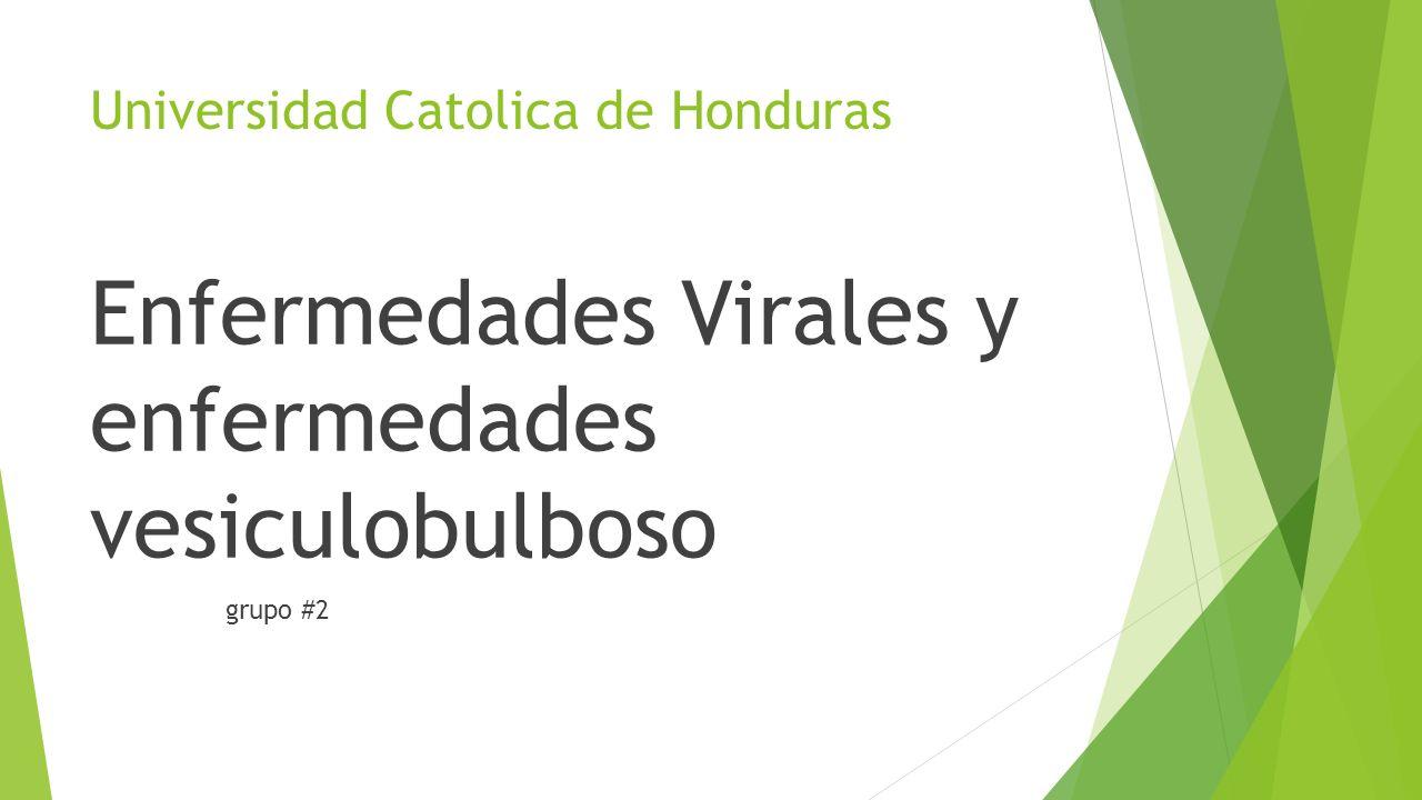 Universidad Catolica de Honduras Enfermedades Virales y enfermedades vesiculobulboso grupo #2