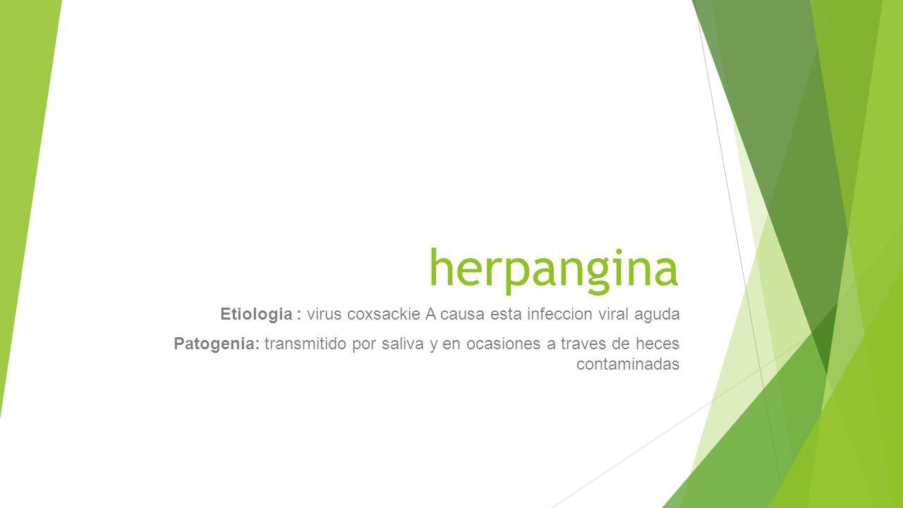 herpangina Etiologia : virus coxsackie A causa esta infeccion viral aguda Patogenia: transmitido por saliva y en ocasiones a traves de heces contamina