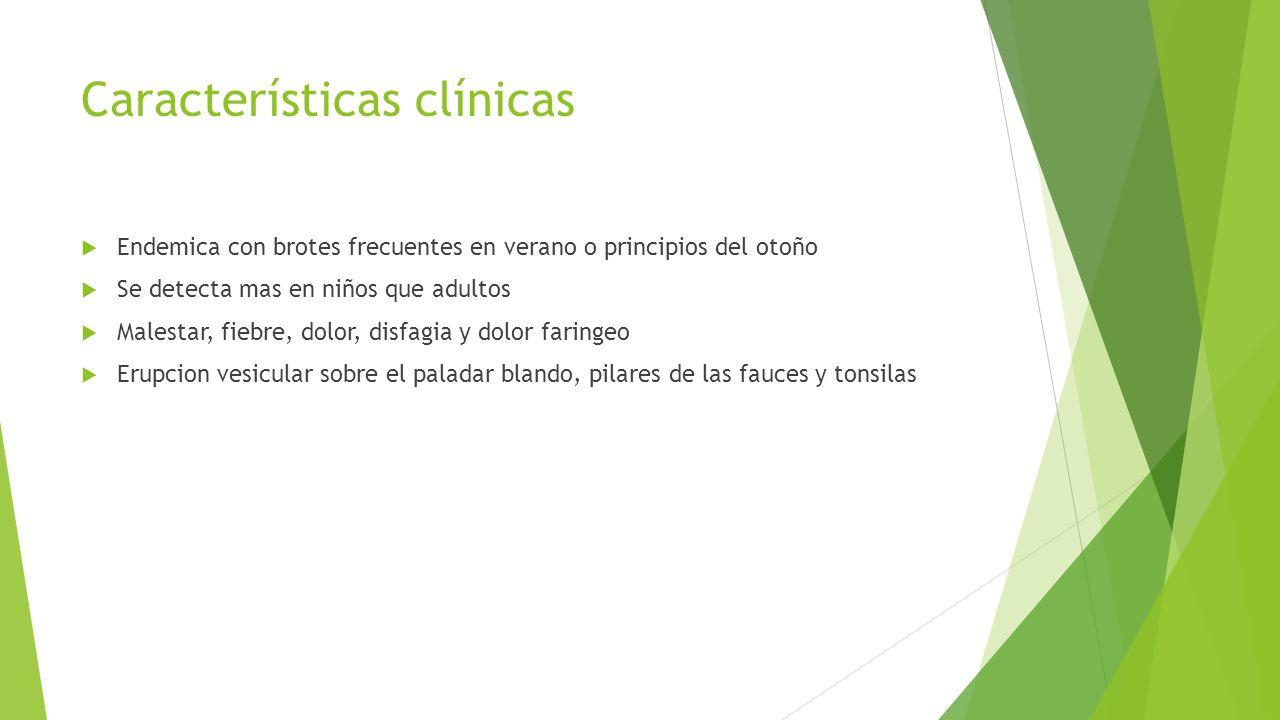 Características clínicas  Endemica con brotes frecuentes en verano o principios del otoño  Se detecta mas en niños que adultos  Malestar, fiebre, d