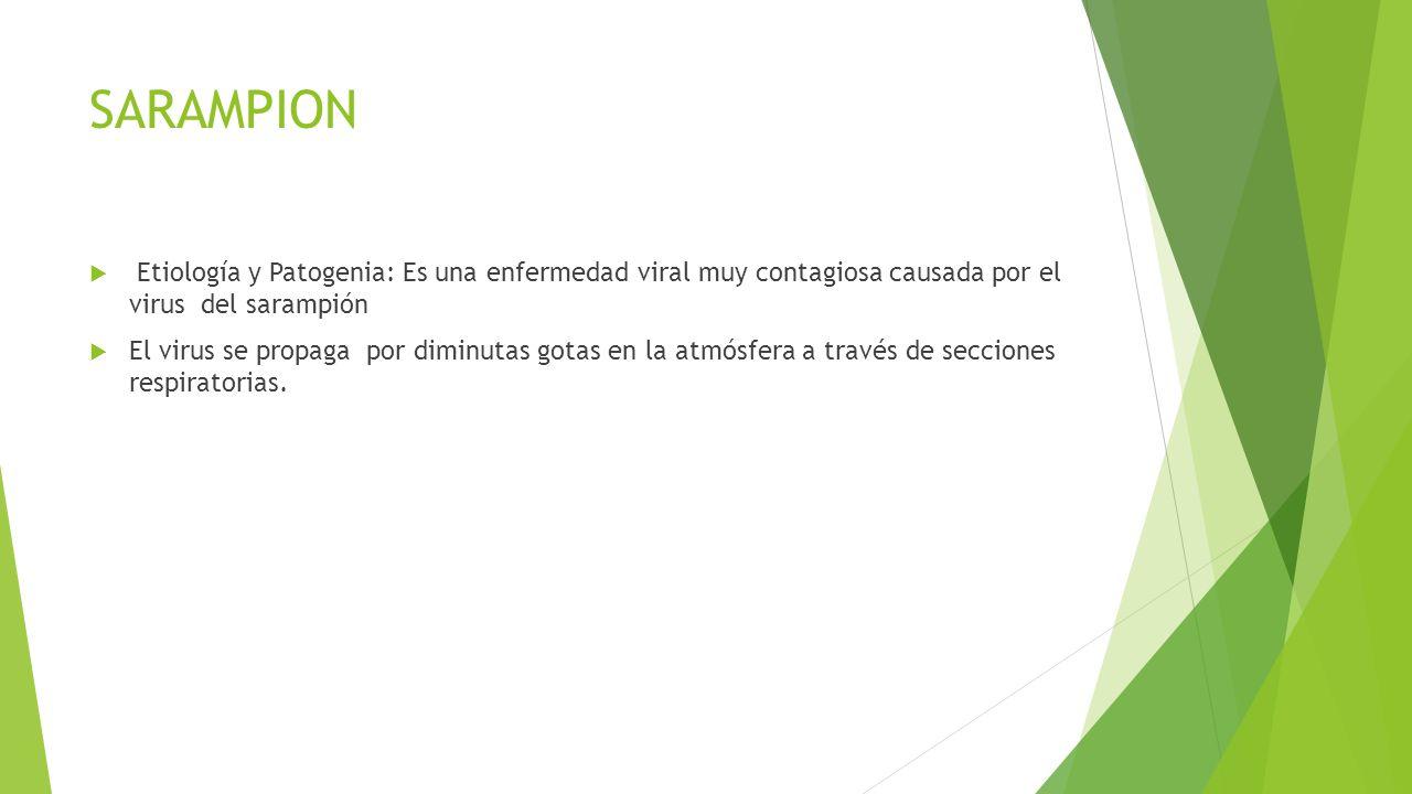 SARAMPION  Etiología y Patogenia: Es una enfermedad viral muy contagiosa causada por el virus del sarampión  El virus se propaga por diminutas gotas