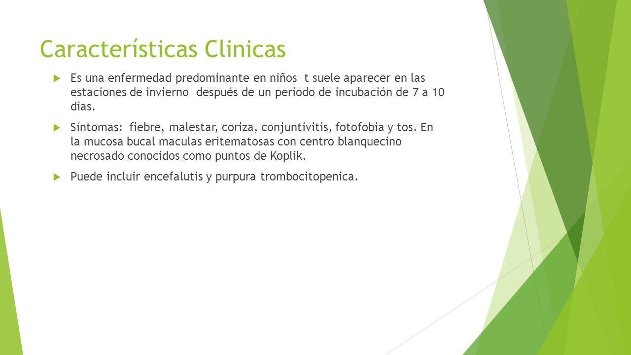 Características Clinicas  Es una enfermedad predominante en niños t suele aparecer en las estaciones de invierno después de un periodo de incubación