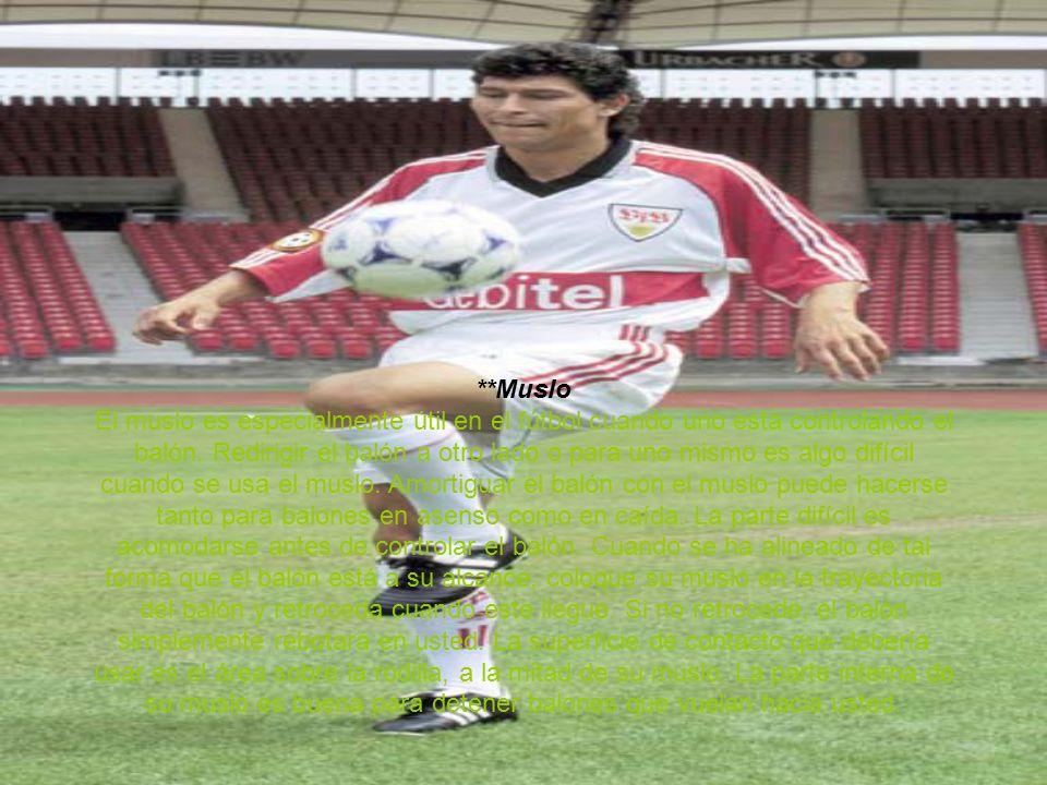 **Muslo El muslo es especialmente útil en el fútbol cuando uno está controlando el balón.