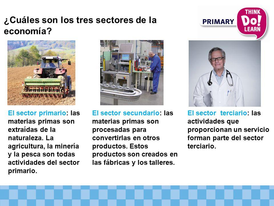 ¿Cuáles son los tres sectores de la economía.