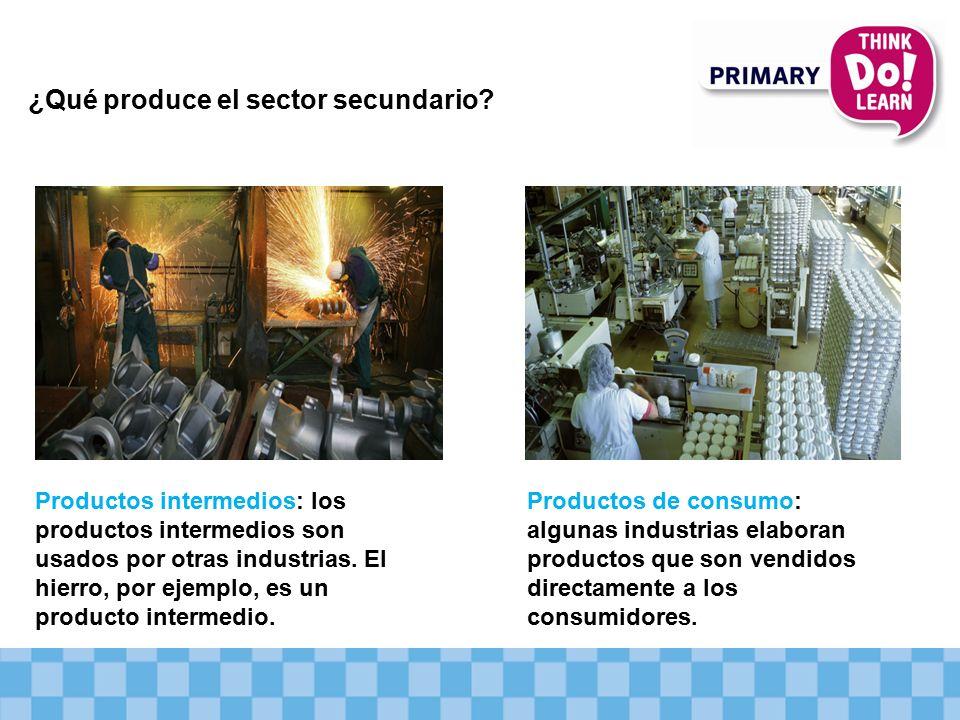 ¿Qué produce el sector secundario.