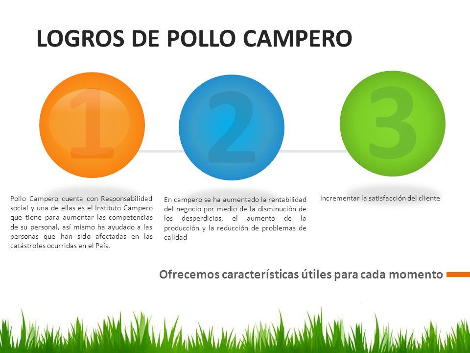 CAMBIOS DE POLLO CAMPERO Diseñar, organizar y colaborar 1
