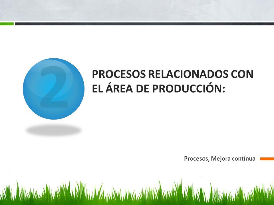 Se tienen procesos definidos de producción, cuyos procesos continuamente son mejorados, cada uno de los productos tiene especificado su proceso de producción y posteriormente se especifican los procesos de armado y despacho cuales deben ajustarse estrictamente a especificaciones y normas establecidas para garantizar la calidad del producto.