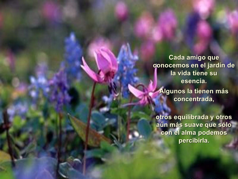 La Esencia de los Amigos Yo siempre digo que los amigos son flores ...