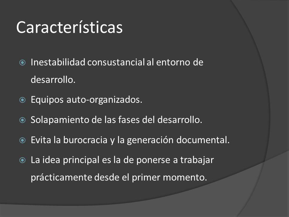 Características  Inestabilidad consustancial al entorno de desarrollo.