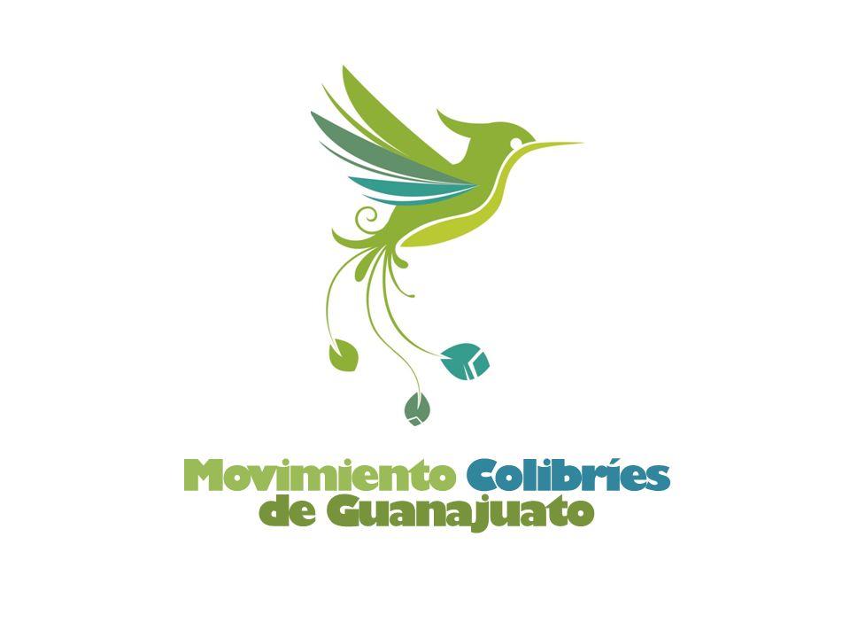 Movimiento Colibríes de Guanajuato