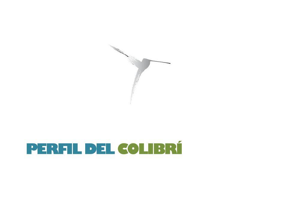 PERFIL DEL COLIBRÍ