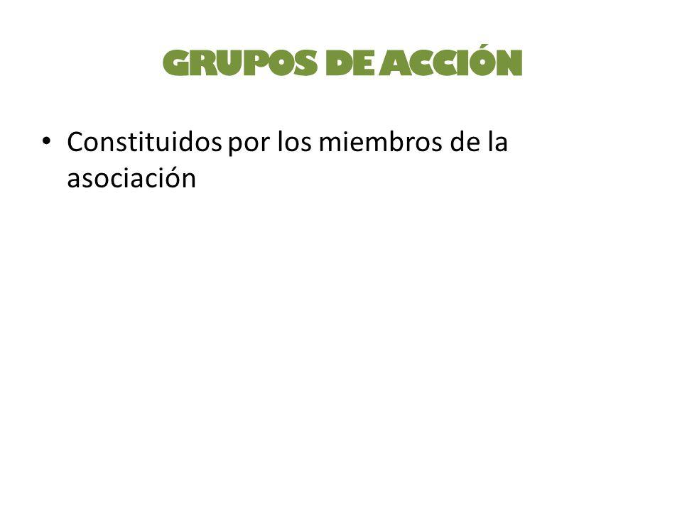 GRUPOS DE ACCIÓN Constituidos por los miembros de la asociación