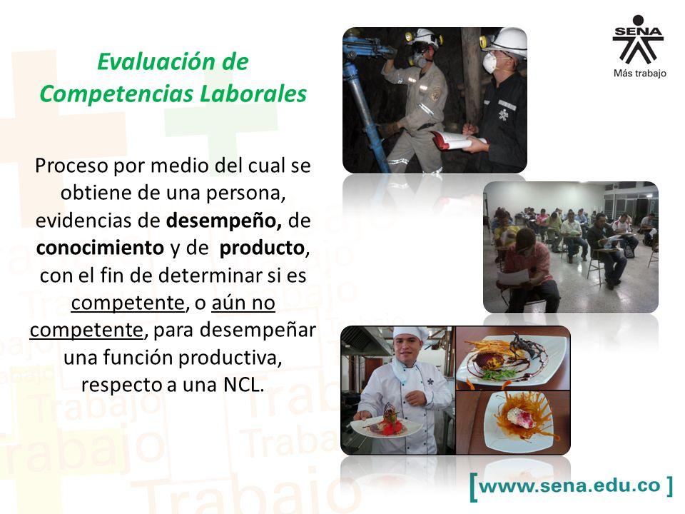 Proceso por medio del cual se obtiene de una persona, evidencias de desempeño, de conocimiento y de producto, con el fin de determinar si es competente, o aún no competente, para desempeñar una función productiva, respecto a una NCL.