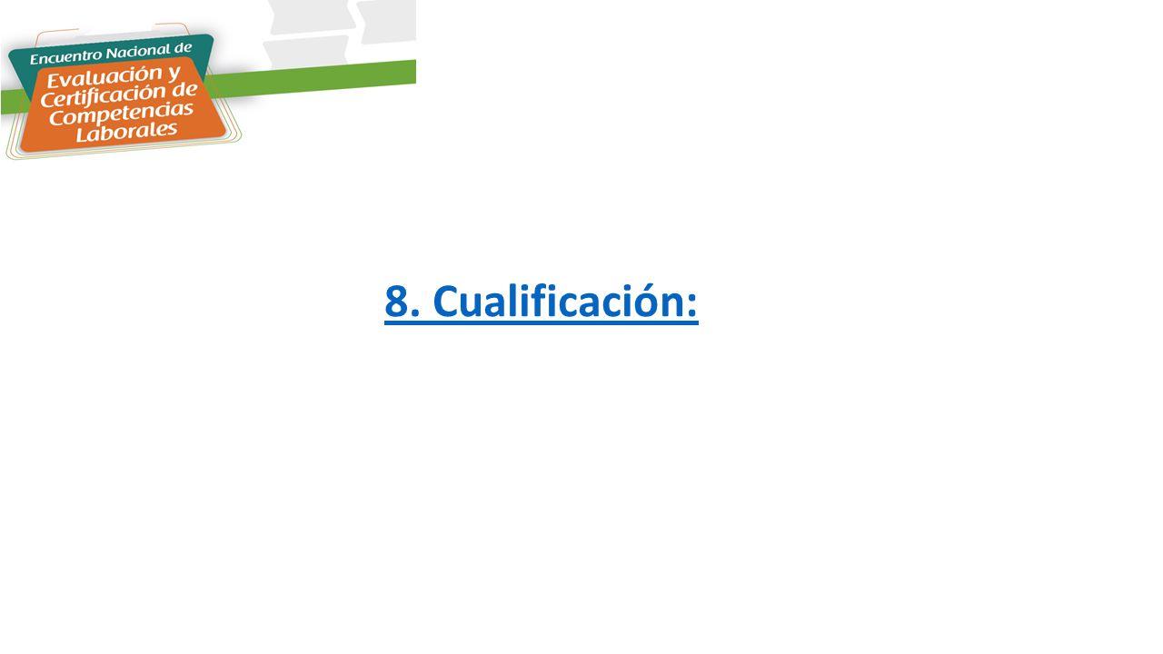 8. Cualificación: