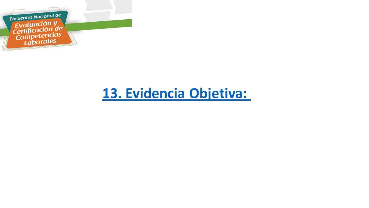 13. Evidencia Objetiva:
