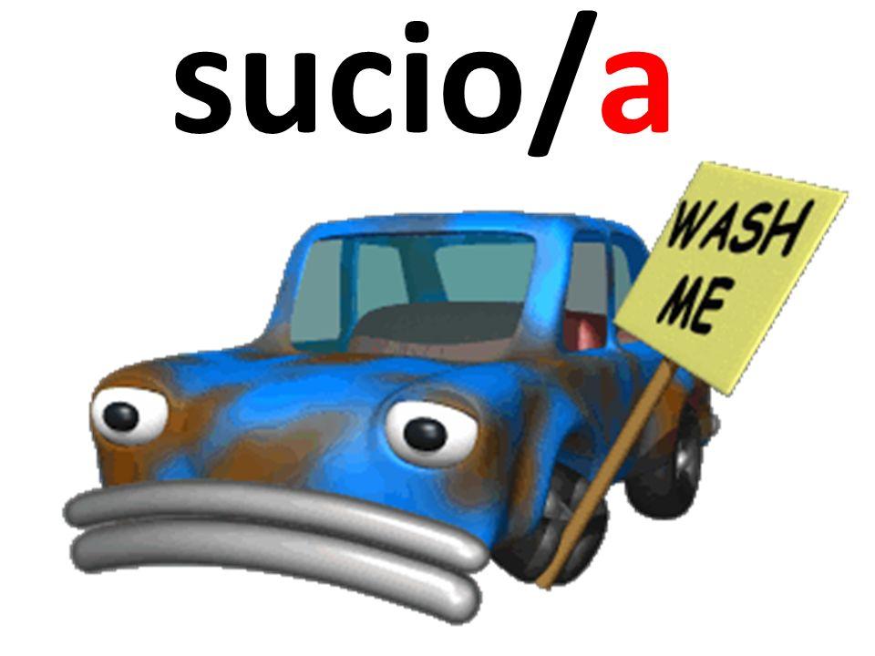 sucio/a