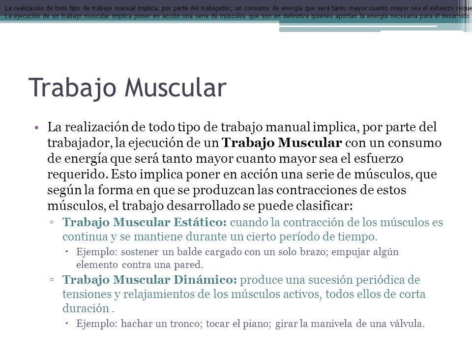 Trabajo Muscular La realización de todo tipo de trabajo manual implica, por parte del trabajador, la ejecución de un Trabajo Muscular con un consumo d