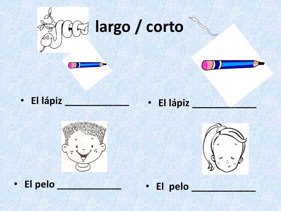 largo / corto El lápiz ____________ El pelo ____________