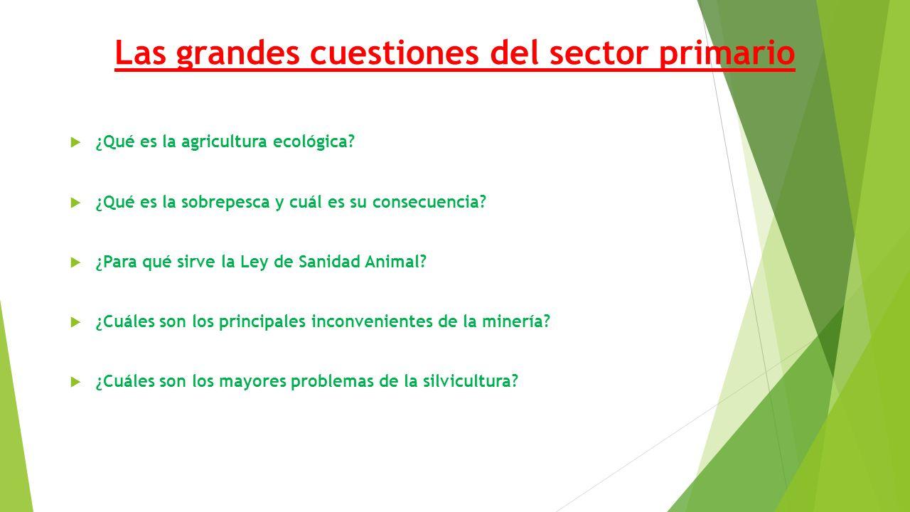 Las grandes cuestiones del sector primario  ¿Qué es la agricultura ecológica.